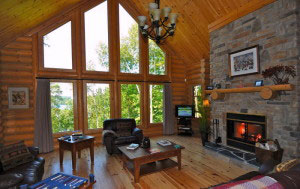 Tree house chalet for rent